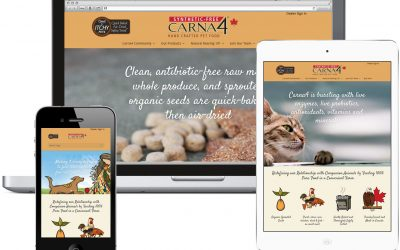 Redesigning the Redesign of Carna4