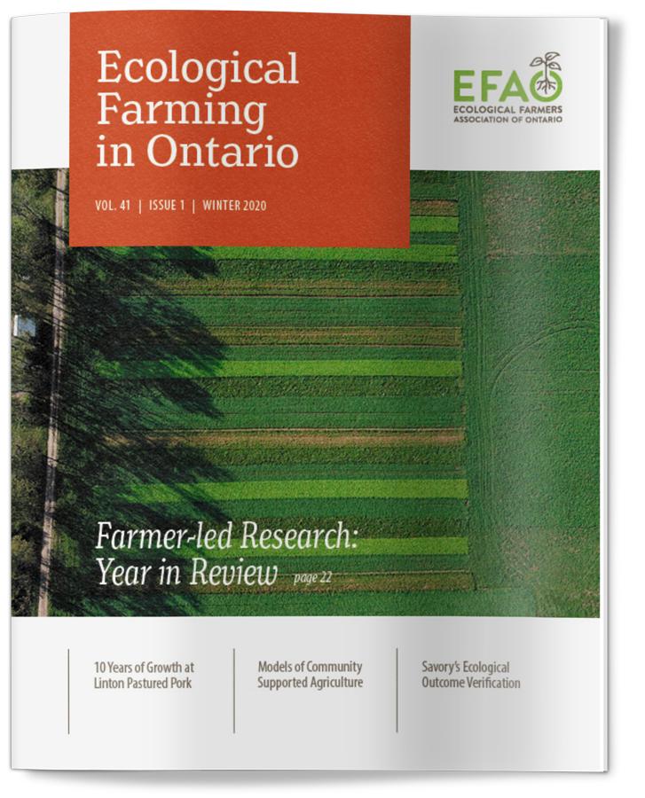 EFAO newsletter cover