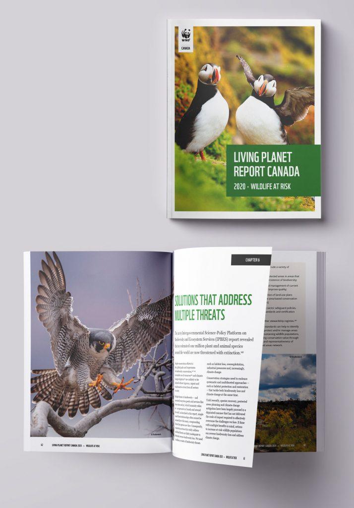 WWF LPRC report design